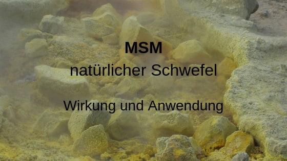 MSM Kapseln kaufen