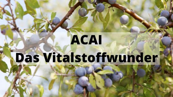 Acai Beeren - das Vitalstoffwunder