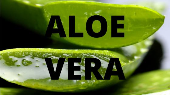 Aloe Vera Saft